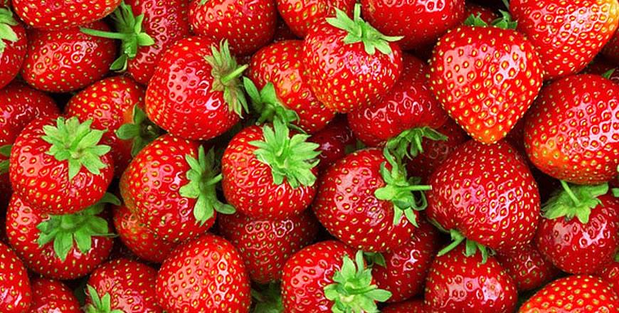 Frutas Juan Subies S.L.