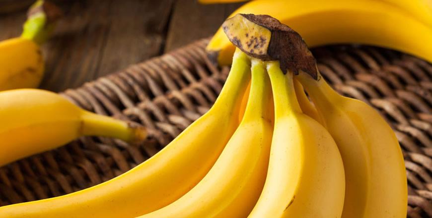 Plátanos Salinas S.L.